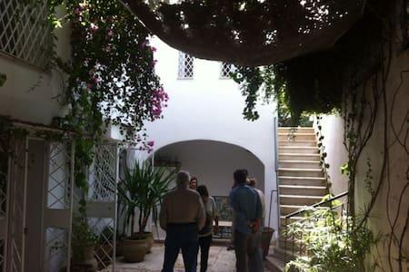 Chambre d'hôtes médina Tunis