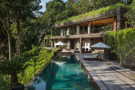 Contemporary Jungle Residence - Villa Chameleon