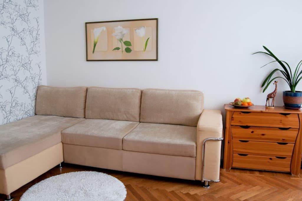 Гостинная с угловым раскладным диваном.