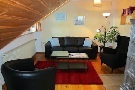Großzügige Ferienwohnung in DKB - Dinkelsbühl - Wohnung