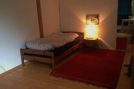 Ruhiges Zimmer im Grünen - Dornach - Rumah