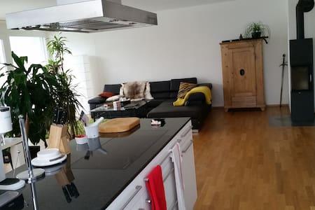 3 1/2 Zimmer Terrassenwonung - Frick