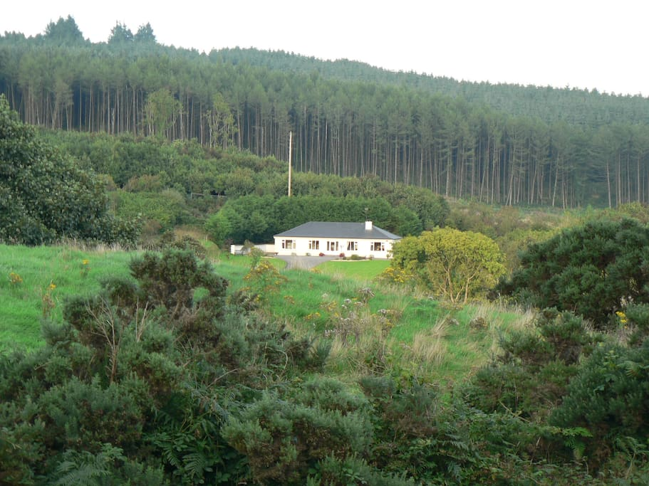 Welcoming family home, nestled in the heart of extensive woodland and rolling hills