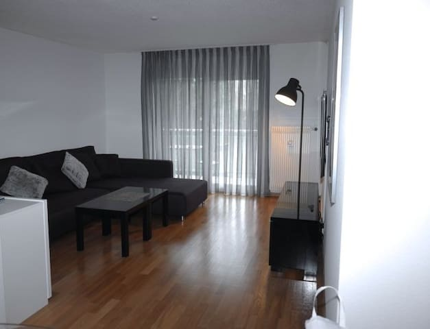 Apartment for the BaselWorld - Pratteln - Apartamento