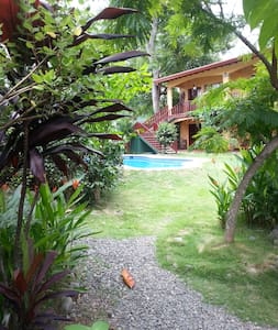 Clean and Spacious furnished apartment - Jaco