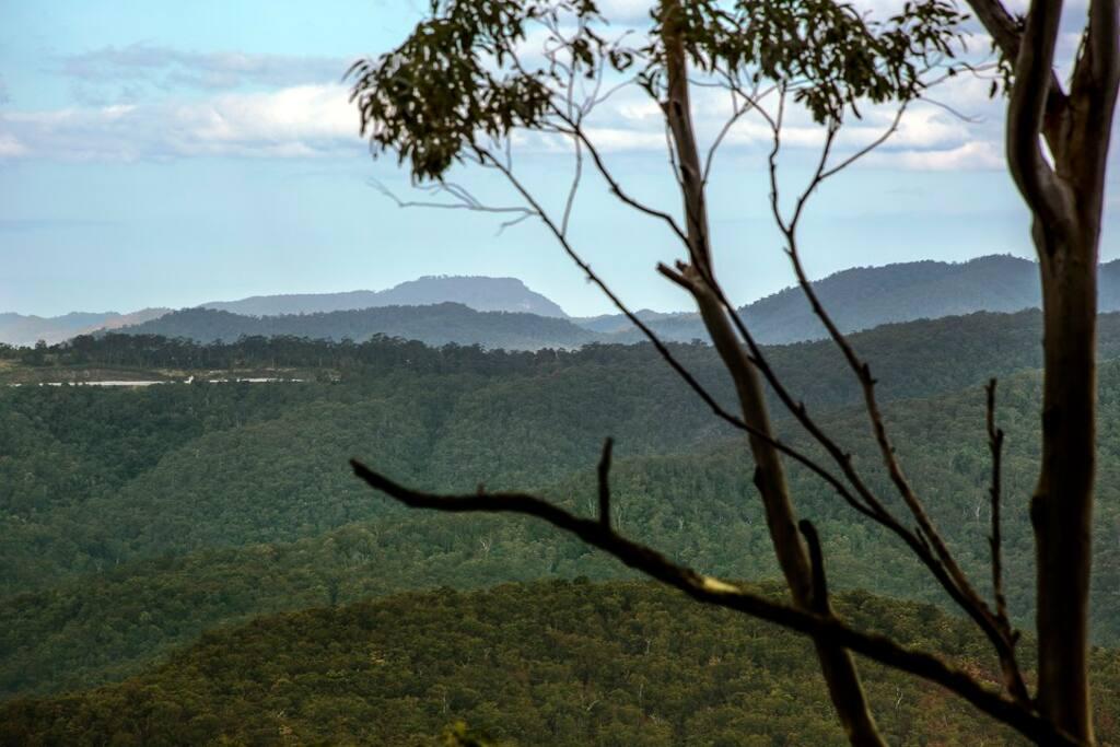 Aaronlee Retreat Mt Tamborine Bed And Breakfasts For Rent In Tamborine Mountain Queensland