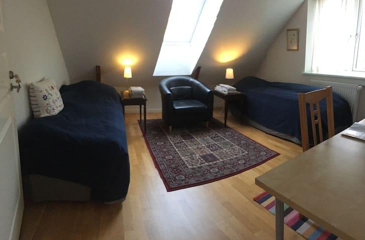 Great Bedroom (3) 600m fr Lyngby St