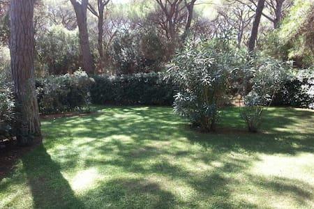 Pineta di Roccamare - Villa - Roccamare