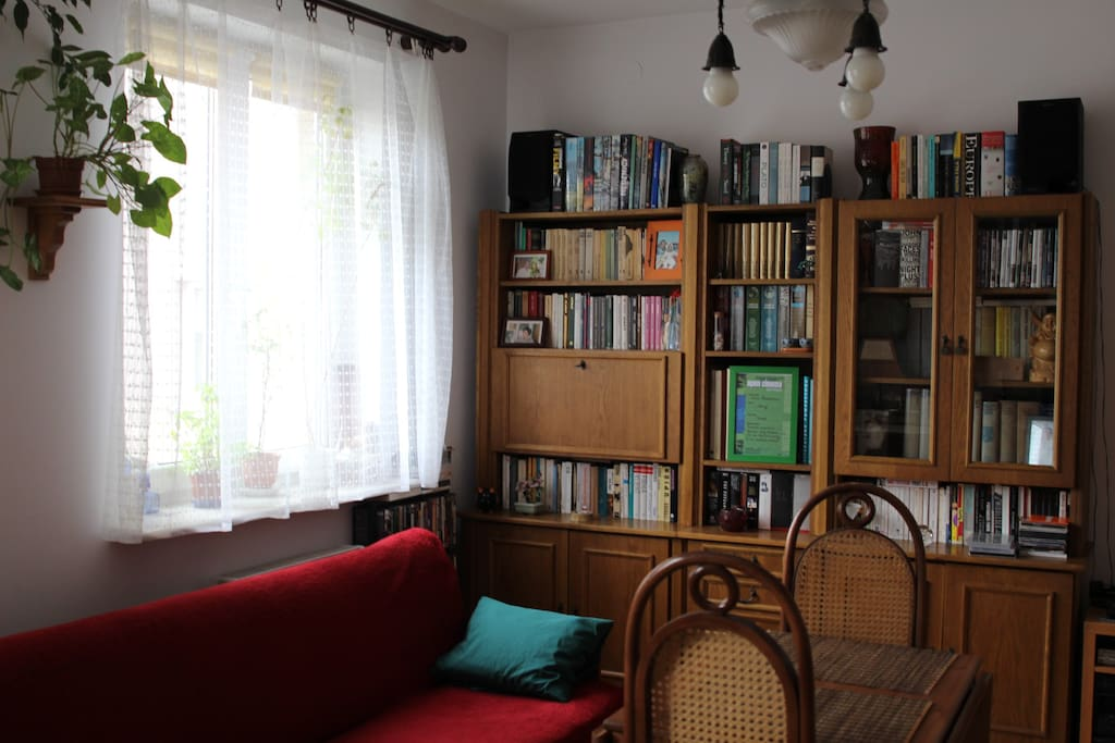 The couch and my library in the background with books in Polish, English and French.