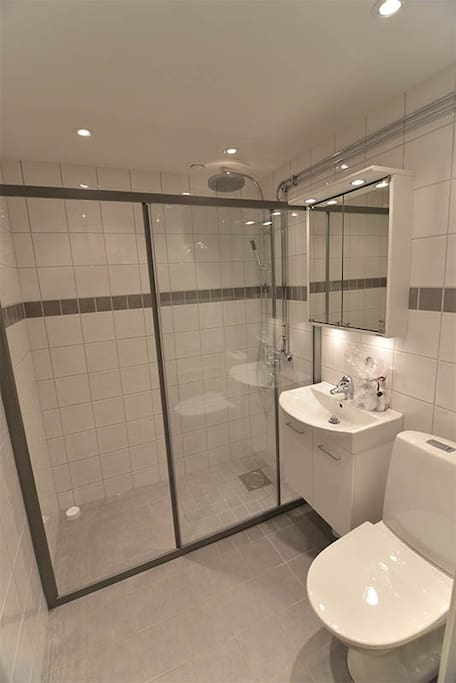New bathroom with large overhead shower. Soap, shampoo and hair dryer is provided.