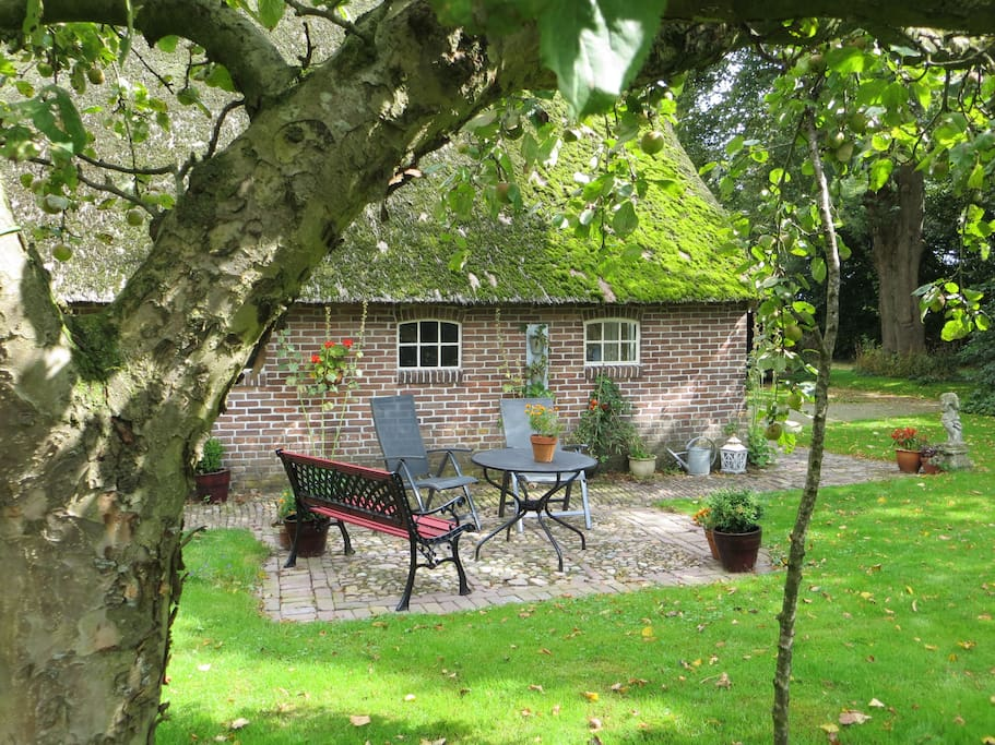 a pleasant garden with privacy and plenty of space for guests .