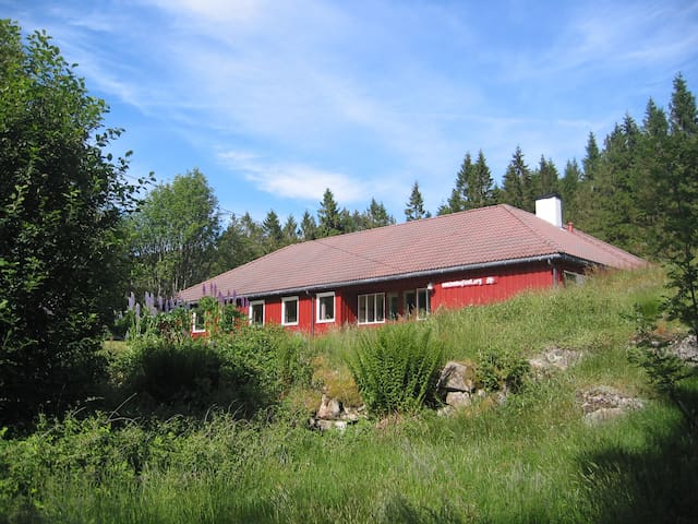Huge holiday home in Nature for 32 - Helleland - Cabin