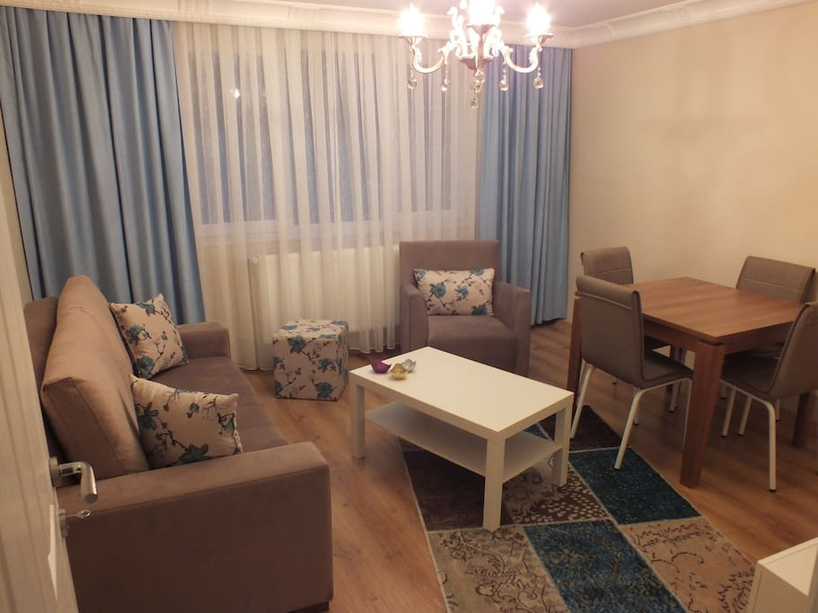 living room has one covertible sofabed for 2 person, a table and Led TV