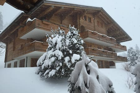 Charming Swiss Mountain Apartment - Rougemont - Apartment