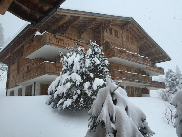 Charming Swiss Mountain Apartment