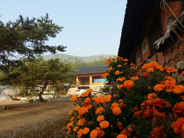 한국 싸띠아난다 요가 아쉬람 Satyananada yoga Ashram korea - Jangpyeong-myeon, Jangheung - Earth House