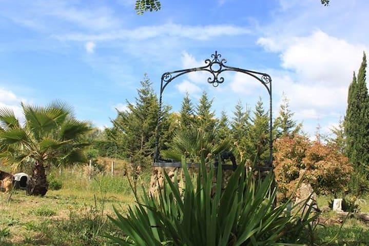 Azienda agricola Campi Cauri - Grammichele