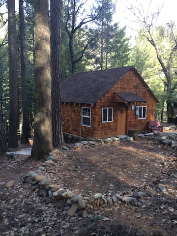 The Todd  - Paxton - Cabin