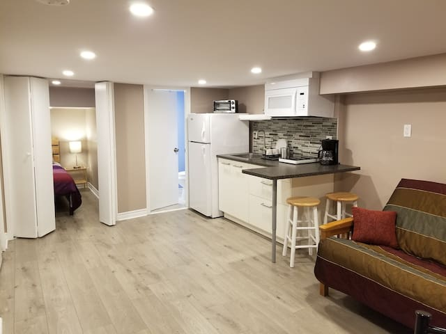 Newly renovated apartment in Greektown
