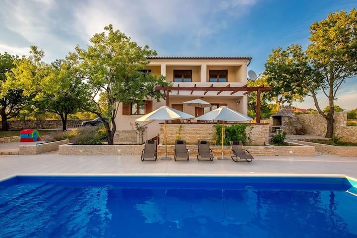 Brand New!!! Olive tree & swimming pool oasis