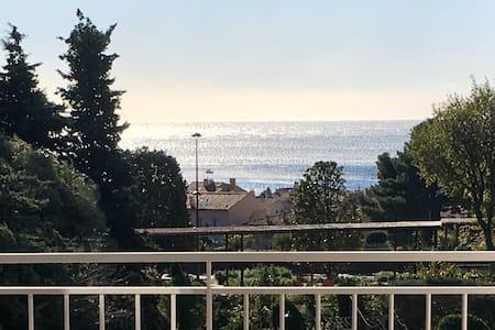 2 pièces 50 m² terrasse 24m² vue mer proche centre