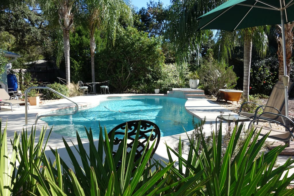 Relaxing pool in a native Florida landscape.