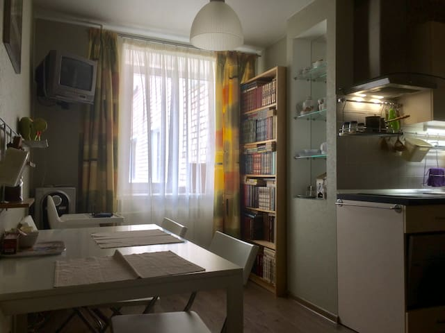 Cozy apartment in the city center.