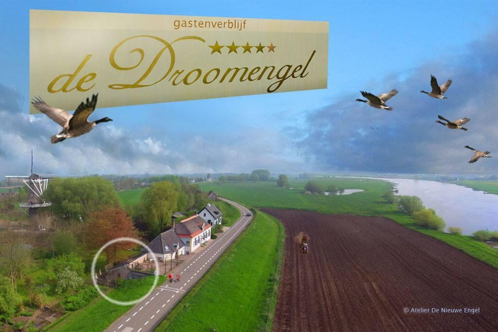 De Droomengel 'Cozy' en 'Flower' zijn schitterend gelegen in de IJsselvallei, tussen Veluwe en Salland.
