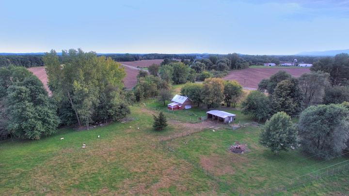 Barn House: isolated sheep farm Hudson area