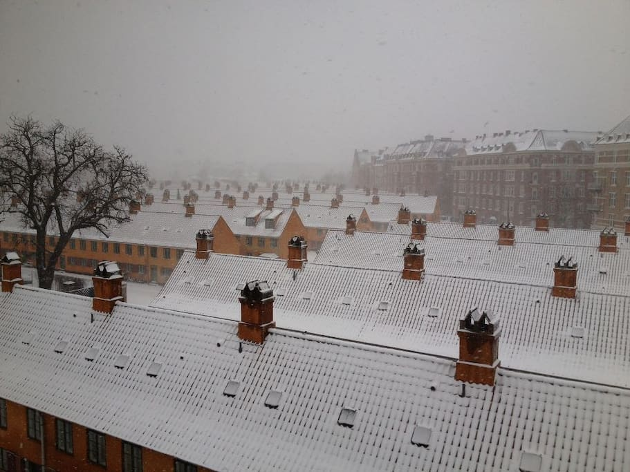 The view winther