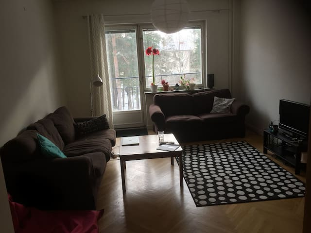 Cozy apartment for rent 25 minutes from centrum