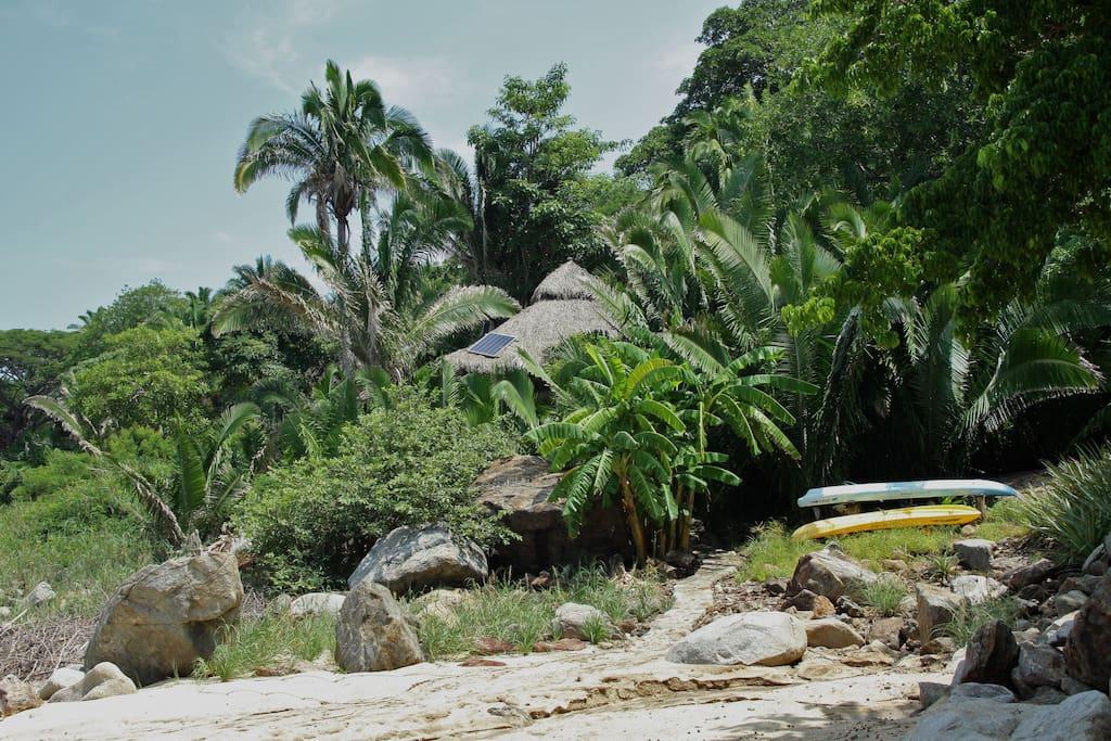 casa de pirata, pathway and kayaks