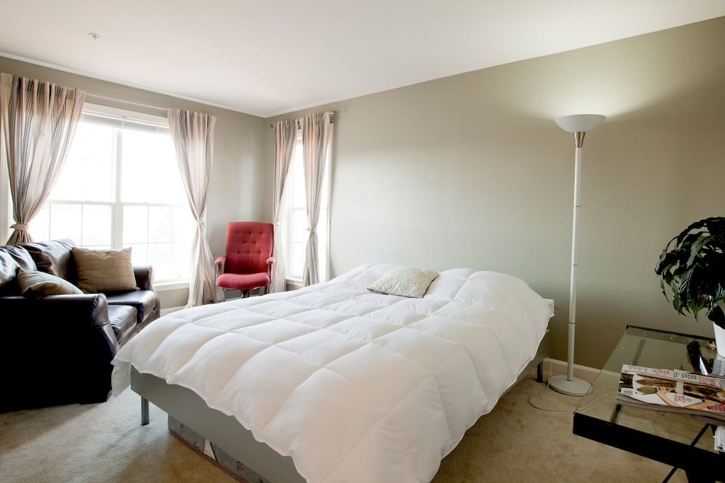 There is a queen bed and day bed in the bedroom.