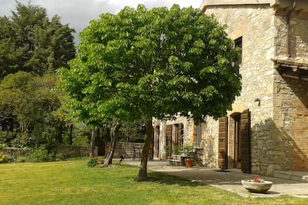 Three rooms with a pool - Todi - Daire