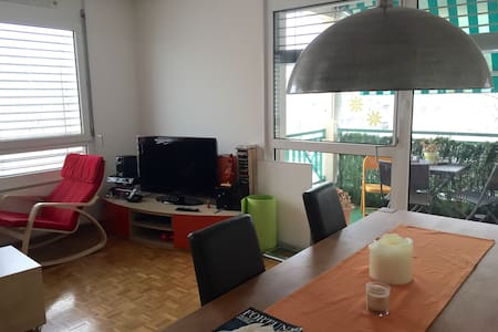 Beautiful Last Floor Room with View - Lancy - Apartmen