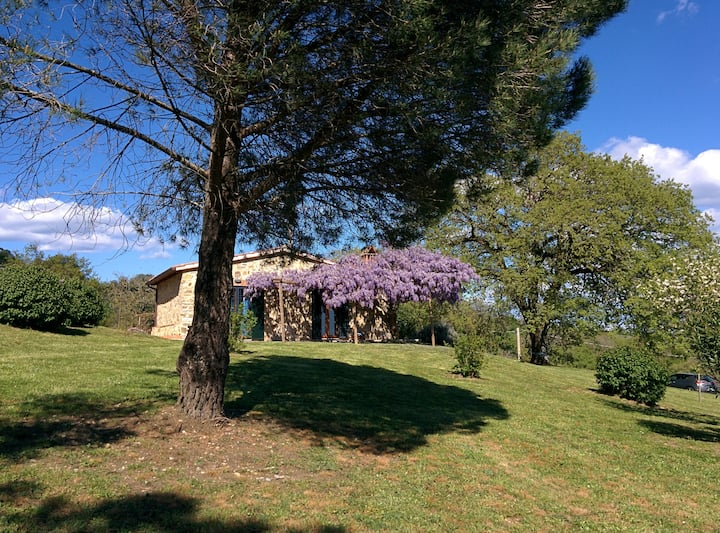 Your cozy and private corner in beautiful Maremma