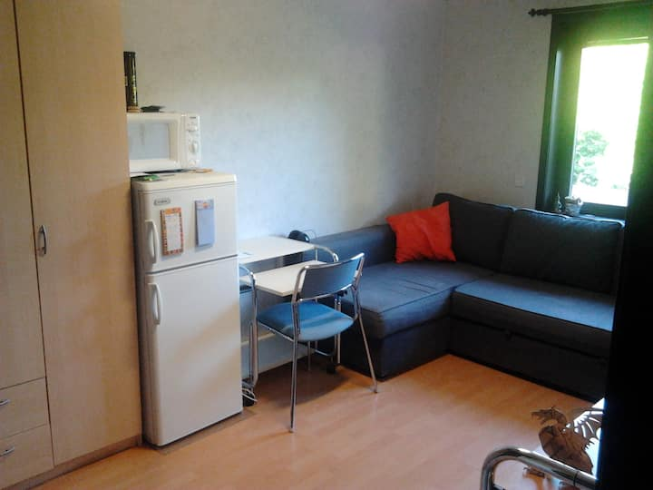 Room for rent close to the nature & city center