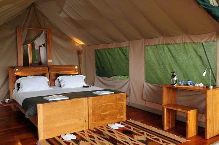 Cosy tent in Galapagos