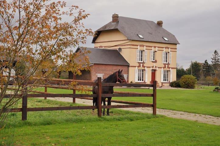 Chambre d'hôtes au coeur d'un haras - Saint-Michel-de-Livet - Bed & Breakfast