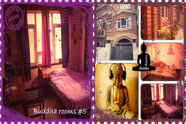 Buddha Rooms Purple