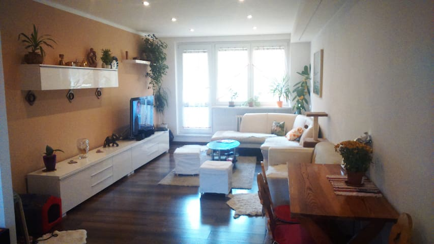 flat 80m2 with balcony  - Ostrava - Appartement
