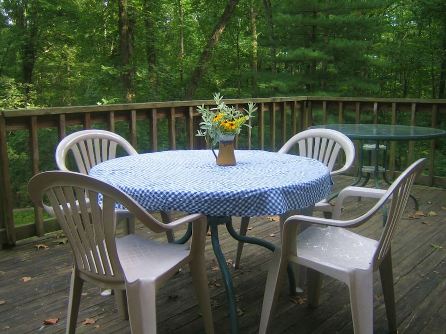 Table on back porch, a great spot for breakfast.