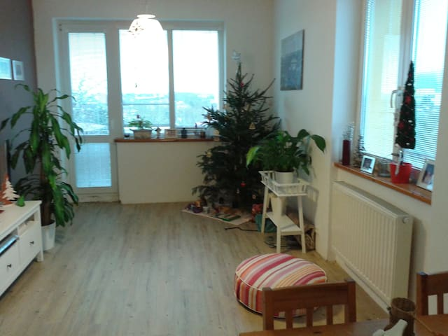 The nice flat in the center - Chomutov - Apartament