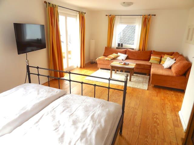 Wohnung nahe Heidelberg & Uniklinik - Dossenheim - Apartment