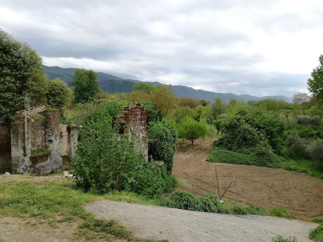 Casolare Tiziana - Oasi di pace e relax - San Martino Valle Caudina - Dom wakacyjny