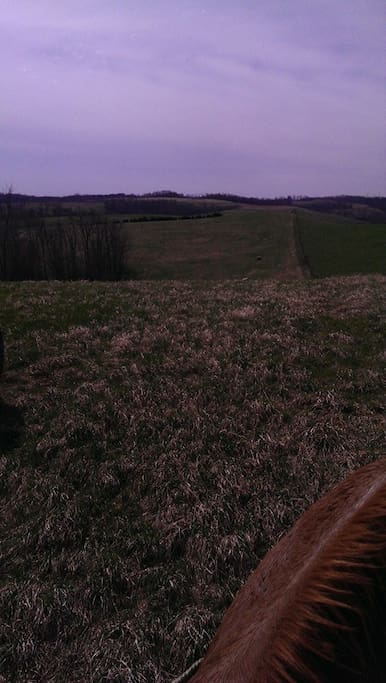 Beautiful views in Coshocton county