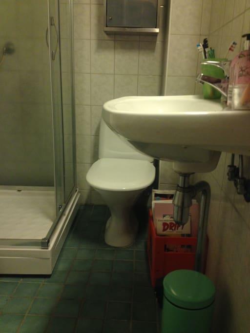 toilet, with washing maschine