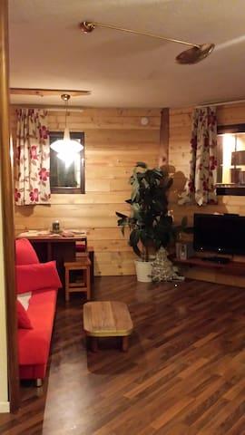 Bel Appartement Chamonix centre ville avec sauna
