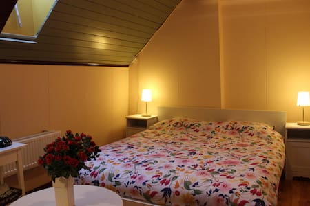 Romantic room in farm from 1675! - Westbroek