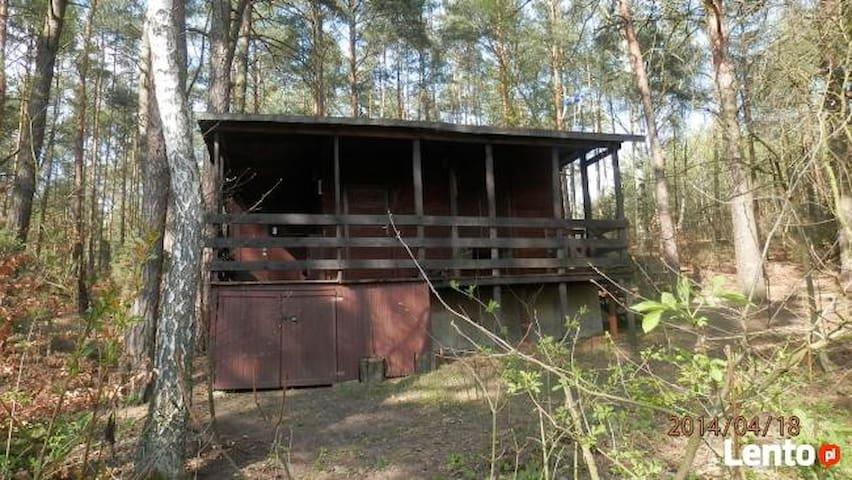 Summer house in Goren - Goreń Duży - Srub